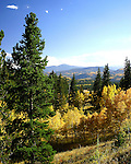 Colorado fall colors in the mountains above Central City, Colorado.