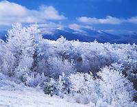 Winter vista, as viewed from Beauty Spot
