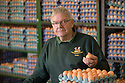 """25/03/16<br /> <br /> Roger Hosking in the egg packing packing shed.<br /> <br /> Full story here:  <br /> <br /> http://www.fstoppress.com/articles/happy-hens/<br /> .<br /> FARMER Roger Hosking doesn't believe there is such a thing as a bad egg, especially when he's talking about youngsters who have already made some bad choices in life.<br /> <br /> So it seems particularly fitting that this Easter, traditionally a time to celebrate new beginnings, he will spend time with disadvantaged kids, counting and grading more than 20,000 eggs each day as part of his unique """"farm school"""" philosophy.<br /> <br />  <br />  <br /> <br /> All Rights Reserved: F Stop Press Ltd. +44(0)1335 418365   www.fstoppress.com."""