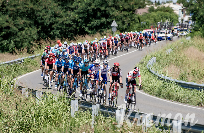 peloton<br /> <br /> 101st Milano-Torino 2020 (UCI 1.Pro)<br /> 1 day race from Mesero to Stupinigi (198km)