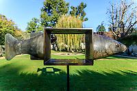 France, Indre-et-Loire (37), Chenonceaux, château et jardins de Chenonceau, jardin Hommage à Russell Page, poisson par François-Xavier
