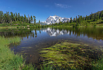 Mount Baker-Snoqualmie National Forest, WA <br /> Picture Lake and Mount Shuksan in the distance