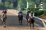 15 May 09:   Payton D'Oro and jockey Terry Thompson win the Black-Eyed Susan Stakes at Pimlico Race Course in Baltimore, Maryland on Black-Eyed Susan Day.