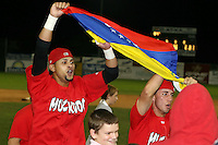 September 15 2008:  Jose Garcia and Frederick Parejo of the Batavia Muckdogs, Class-A affiliate of the St. Louis Cardinals, celebrate winning the NY-Penn League championship after a game at Dwyer Stadium in Batavia, NY.  Photo by:  Mike Janes/Four Seam Images
