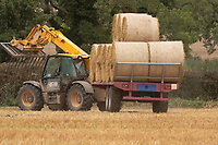 10.9.2020 Carting round bales of straw <br /> ©Tim Scrivener Photographer 07850 303986<br />      ....Covering Agriculture In The UK.