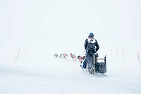 Justin Stielstra and team runs on the trail in 20 mph wind with snow blowing across the trail as he crosses the raod 5 miles from Nome during the 2017 Iditarod on Friday March 17, 2017.<br /> <br /> Photo by Jeff Schultz/SchultzPhoto.com  (C) 2017  ALL RIGHTS RESERVED