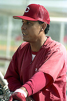 Cincinnati Reds coach Tony Perez during spring training circa 1989.  (MJA/Four Seam Images)