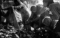 11.2008  Pushkar (Rajasthan)<br /> <br /> Women praying near a holy tree during the pilgrimage of kartik purnima.<br /> <br /> Femmes en train de prier près d'un arbre sacré pendant le pèlerinage de kartik purnima.