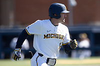Michigan Wolverines third baseman Christian Molfetta (14) runs to first base during the NCAA baseball game against the Illinois Fighting Illini on March 20, 2021 at Fisher Stadium in Ann Arbor, Michigan. Michigan won the game 8-1. (Andrew Woolley/Four Seam Images)