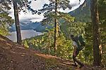Hiking, Hiker, Little Beaver trail, Mount Whatcom, Picket Range, North Cascades National Park, wilderness, Cascade Mountains, Washington State, Pacific Northwest, United States, Scott McCredie, released,.