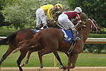 HOT SPRINGS, AR - APRIL 9: Terra Promessa #2 with jockey Ricardo Santana, Jr. and Taxable #1 with jockey Joseph Rocco, Jr. celebrating after crossing the finish line in the Fantasy Stakes at Oaklawn Park on April 9, 2016 in Hot Springs, Arkansas. (Photo by Justin Manning/Elipse Sportwire/Getty Images)