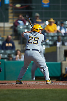 Matt McCormick (25) of the West Virginia Mountaineers at bat against the Illinois Fighting Illini at TicketReturn.com Field at Pelicans Ballpark on February 23, 2020 in Myrtle Beach, South Carolina. The Fighting Illini defeated the Mountaineers 2-1.  (Brian Westerholt/Four Seam Images)