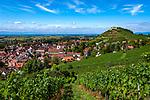 Deutschland, Baden-Wuerttemberg, Markgraefler Land, Weinort Staufen: auf einem Huegel die Burgruine Staufen | Germany, Baden-Wuerttemberg, Markgraefler Land, wine village Staufen; above castle ruin Staufen nested on a hill
