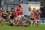 Llanelli player's celebrate at the final whistle. Newport V Llanelli, Principality Premiership. © Ian Cook IJC Photography iancook@ijcphotography.co.uk www.ijcphotography.co.uk