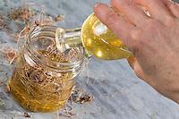Schlüsselblumen-Honig, Schlüsselblumen-Honig, Honig zusammen mit Wurzel, Wurzeln von Schlüsselblume, Wurzelhonig, Wurzel-Honig. Schlüsselblumen-Wurzeln, Schlüsselblumen-Wurzel, Hohe Schlüsselblume, Wald-Schlüsselblume, Waldschlüsselblume, Primel, Primula elatior, Oxlip, true oxlip, root, roots, Paigles, La Primevère élevée, Primevère des bois