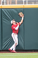 Louisville Cardinals outfielder Lucas Dunn (7) runs into the outfield wall during Game 7 of the NCAA College World Series against the Auburn Tigers on June 18, 2019 at TD Ameritrade Park in Omaha, Nebraska. Louisville defeated Auburn 5-3. (Andrew Woolley/Four Seam Images)
