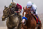 BALTIMORE, MD - MAY 19: Justify #7 with Mike Smith defeats Tenforld #6 to win the 143rd Preakness Stakes at Pimlico Racecourse on May 19, 2018 in Baltimore, Maryland. (Photo by Alex Evers/Eclipse Sportswire/Getty Images)