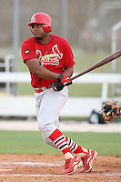 April 14, 2009:  Jairo Martinez of the St. Louis Cardinals extended spring training team during a game at Roger Dean Stadium Training Complex in Jupiter, FL.  Photo by:  Mike Janes/Four Seam Images