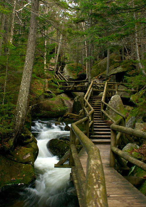 A long stretch of boardwalk leading through the Lost River Gorge.