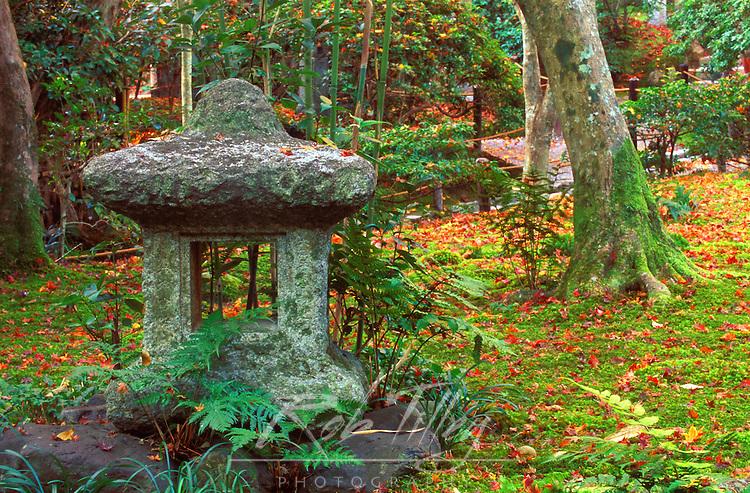 Giohji Temple, Arashiyama, Kyoto, Japan