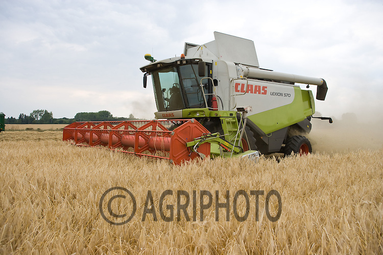 Barley Harvest Starts ten days early in Cambridgeshire as contractor F C & H S Allen Ltd start harvesting Sequel Winter Barley at 14.5% Moisture on J Perkins,.Nunton House Farm,Maxey,Cambridgshire. Yield is expected to be down due to the drought in East Anglia..Picture Tim Scrivener date taken 2nd July  2011 mobile 07850 303986 e-mail tim@agriphoto.com.....covering Agriculture in The United Kingdom....
