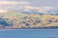 View across Poverty Bay, Gisborne, north island, New Zealand.