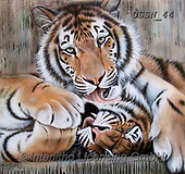 Sandi, REALISTIC ANIMALS, REALISTISCHE TIERE, ANIMALES REALISTICOS, paintings+++++,USSN44,#a#, EVERYDAY ,tiger,tigers, ,puzzles