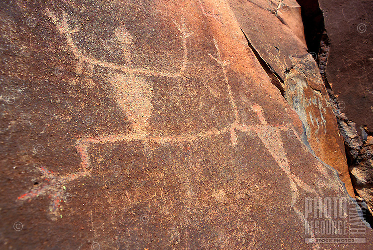 Well preserved Native Hawaiian petroglyphs on a rock face in Olowalu, Maui.
