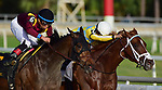 TAMPA, FL - February 10: Flameaway, #2, with Jose Lezcano in the irons, battles Catholic Boy, #6 and Manuel Franco down the stretch in the Sam F Davis Stakes (Grade III) at Tampa Bay Downs on February 10, 2018 in Tampa, FL. (Photo by Taylor Gross/Eclipse Sportswire/Getty Images.)