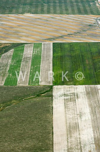 Patchwork of farm fields, northeastern Colorado.  July 2013. 89931