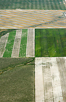 Patchwork of farm fields, northeastern Colorado.  July 2013. 89931