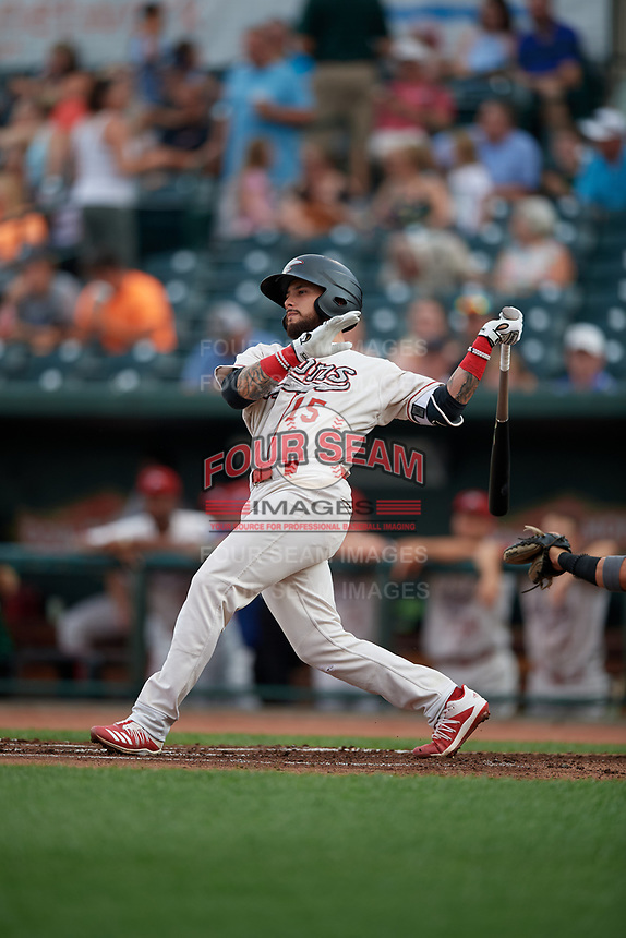 Great Lakes Loons Jacob Amaya (15) at bat during a Midwest League game against the Clinton LumberKings on July 19, 2019 at Dow Diamond in Midland, Michigan.  Clinton defeated Great Lakes 3-2.  (Mike Janes/Four Seam Images)