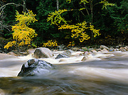 Sawyer River in the White Mountains, New Hampshire during the autumn months.