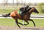 07 April 2011.  Hip #105 Any Given Saturday - Blue Lagoon filly consigned by Wavertree Stables works 1/4 in 21.0.