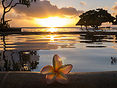 Flic en Flac, Mauritius. La Pirogue tourist resort. Infinity pool and Frangipani flower at dusk.