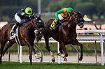 ARCADIA, CA - FEBRUARY 10: Om #6 with Flavien Prat win the Thunder Road Stakes at Santa Anita Park on February 10, 2018 in Arcadia, California. (Photo by Alex Evers/Eclipse Sportswire/Getty Images)