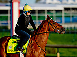 LOUISVILLE, KY - APRIL 29: Hofburg, trained by Bill Mott, exercises in preparation for the Kentucky Derby at Churchill Downs on April 29, 2018 in Louisville, Kentucky. (Photo by Scott Serio/Eclipse Sportswire/Getty Images)