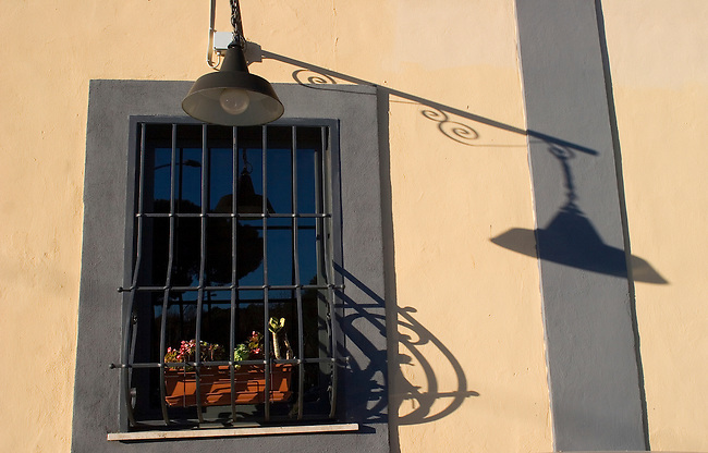 Barred Window, Flower Pots, Rome, Italy