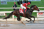 Flat Out with Alex Solis win the Grade I Jockey Club Gold Cup for 3-year & up, at 1 1/4 mile, at Belmont Park.  Trainer Charles Dickey. Owner Preston Stables.