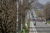peloton stays closed for a very long time into the race<br /> <br /> 76th Dwars door Vlaanderen 2021 (MEN1.UWT)<br /> 1 day race from Roeselare to Waregem (184km)<br /> <br /> ©kramon