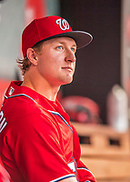 29 July 2017: Washington Nationals rookie outfielder Andrew Stevenson in the dugout prior to a game against the Colorado Rockies at Nationals Park in Washington, DC. The Rockies defeated the Nationals 4-2 in the first game of their 3-game weekend series. Mandatory Credit: Ed Wolfstein Photo *** RAW (NEF) Image File Available ***