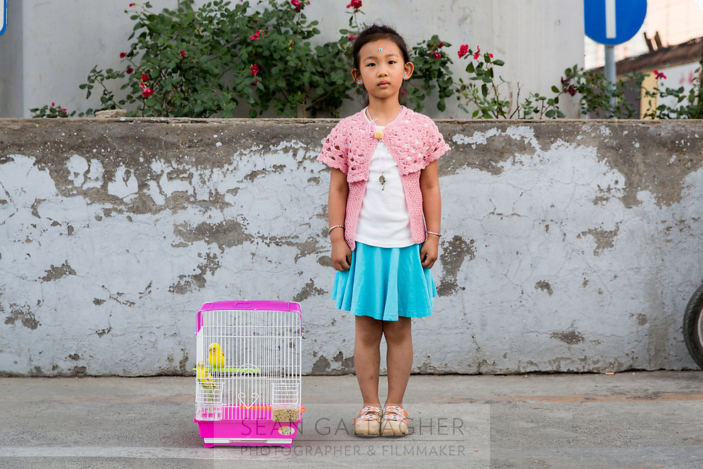 Du Ruofei, 4, stands with two newly purchased budgerigar (Melopsittacus undulatus) from Beijing's  Shilihe pet market. A popular beginner 'exotic' pet, budgerigar are also known as a common parakeet and are endemic to Australia.