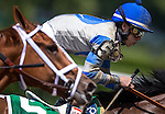 June 7, 2014: Irad Ortiz Jr. rides Sweet Reason in the 84th running of The TVG Acorn on Belmont Stakes Day in Elmont, NY. Jon Durr/ESW/CSM