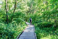 France, Nievre, Regional Natural Park of Morvan, Montsauche les Settons, Lac des Settons, circuit around the lake // France, Nièvre (58), Parc naturel régional du Morvan, Montsauche-les-Settons, lac des Settons, circuit autour du lac