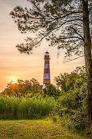 Assateague Island Lighthouse Assateague Island Virginia