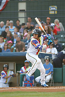 Myrtle Beach Pelicans infielder Carlos Sepulveda (11) at bat during a game against the Lynchburg Hillcats at Ticketreturn Field at Pelicans Ballpark on April 15, 2017 in Myrtle Beach, South Carolina.  The Pelicans wore Special Olympics jerseys that night. Lynchburg defeated Myrtle Beach 5-3. (Robert Gurganus/Four Seam Images)
