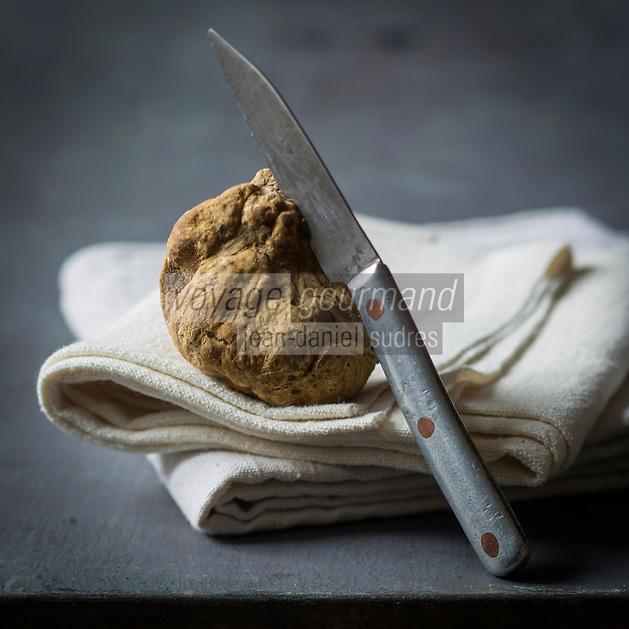 Europe, Italie, Piemont, Alba: Truffe blanche d'Alba, tuber magnatum pico  - Stylisme : Valérie Lhomme // Europe, Italy, Piedmont, Alba: Alba White truffle, tuber magnatum , Styling Valérie Lhomme