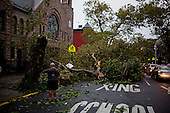 New York, New York<br /> September 16, 2010<br /> <br /> Park Slope after a severe storm and possible tornado. Downed trees on 8th Avenue at 3rd Street.