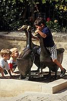 """Europe/France/Aquitaine/24/Dordogne/Vallée de la Dordogne/Périgord/Périgord Noir/Sarlat-la-Canéda: La place du marché aux oies - """"Les oies"""" statue par Lalanne"""