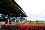 31 October 2009: Crowds were light on Keeneland's final day of fall racing at the historic venue.